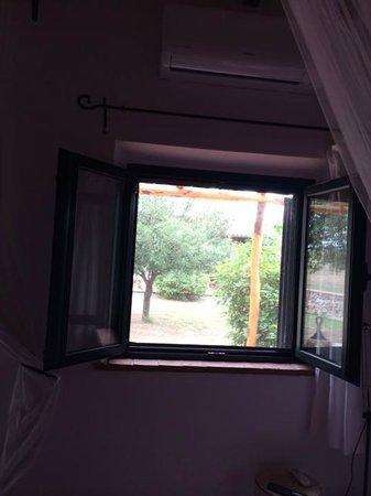 B&B At Home In Maremma : Habitación