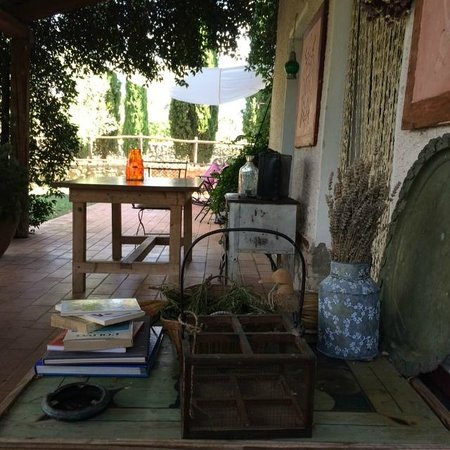 B&B At Home In Maremma : Entorno