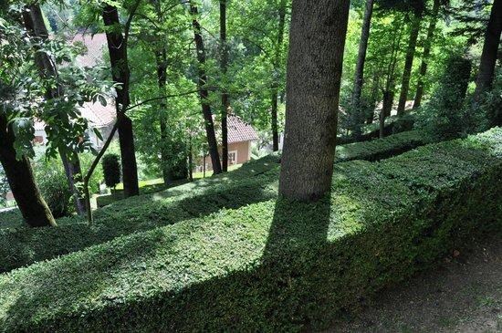 Hotel Maristany: Bosque privado del Hotel