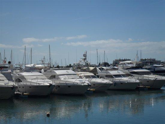 Marina de Vilamoura: Barcos