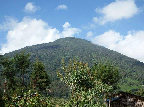 Volcanoes National Park: Summit