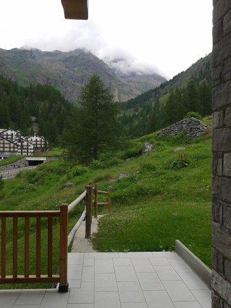 Ellex Hotel : en toen moest de kudde koeien nog komen!!