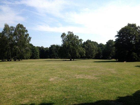 Tiergarten: Magnifico parco