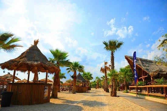 Blue Sea Hotel: Alimos beach, Akti Iliou