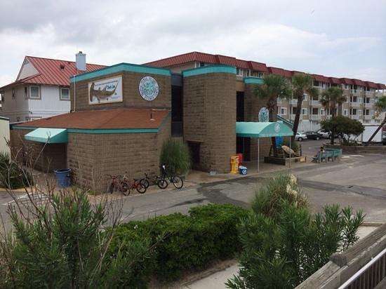 Tybee Island Marine Science Center: Marine Science Center on Tybee Island