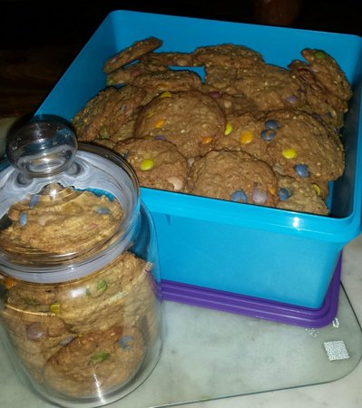 Roosfontein Bed and Breakfast : Home Made Smartie Cookies