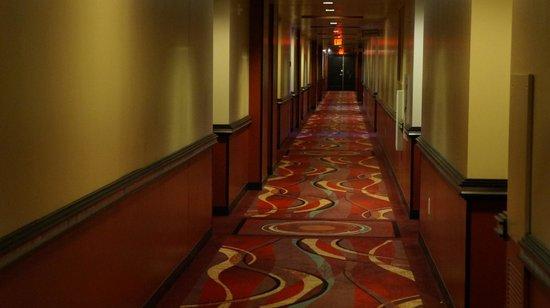 Elara by Hilton Grand Vacations: Corredor do hotel