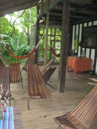 Parrot Nest Lodge: Common area for relaxing