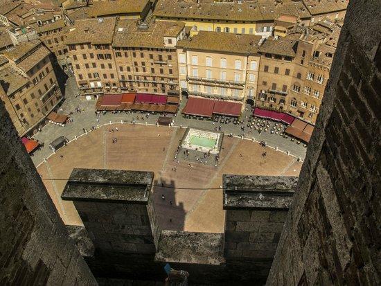 Torre del Mangia: piazza del Campo vista da in cima la torre