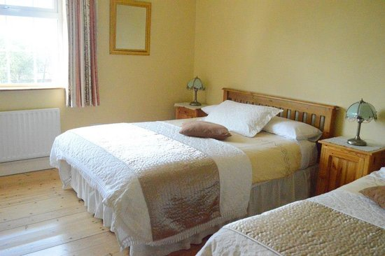 Rockbrook House: Double or Twin Room
