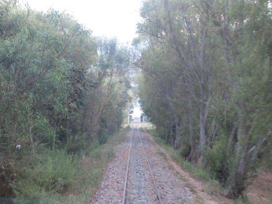 PeruRail - Vistadome: El camino