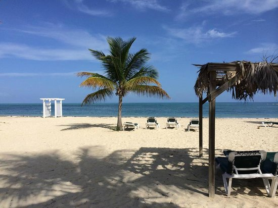 Viva Wyndham Fortuna Beach: Gorgeous Beach Day