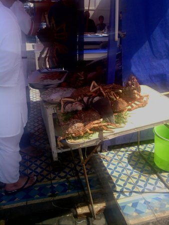 Essaouira Fish Market : Fresh fish