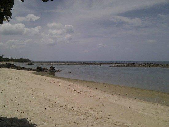 Centara Villas Samui: Strand bei Ebbe