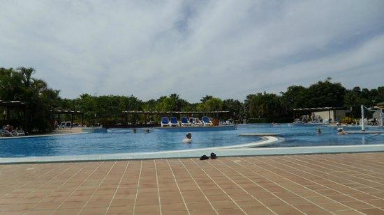 Blau Varadero Hotel Cuba: pool view
