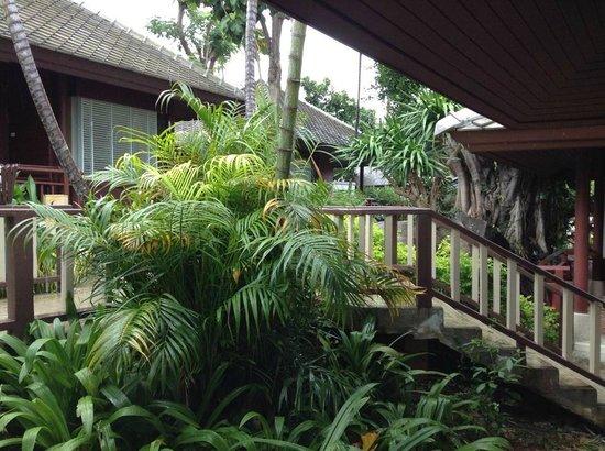 Centara Villas Samui: Anlage bei Regen