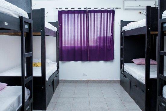 El Viajero San Andres Hostel & Suites: 8 Bed Dorm