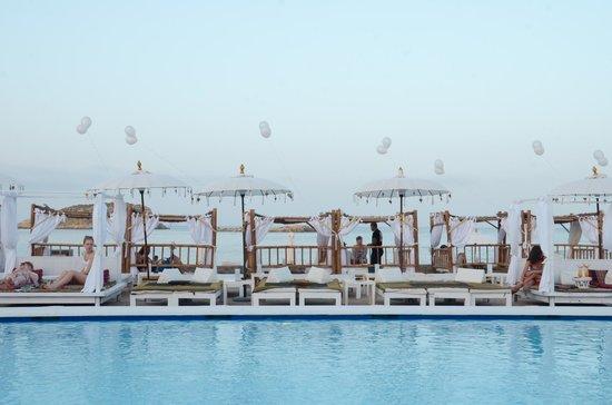 Jacaranda Lounge: Olimpic Swimmingpool