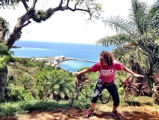 Jungle Top Zipline Adventure: Great views from the top!