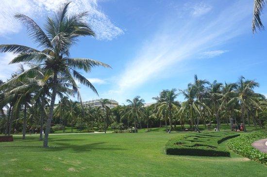 Sheraton Sanya Yalong Bay Resort: Garden