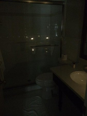 Golden Plough Inn at Peddler's Village: Loved the dim lit bathroom