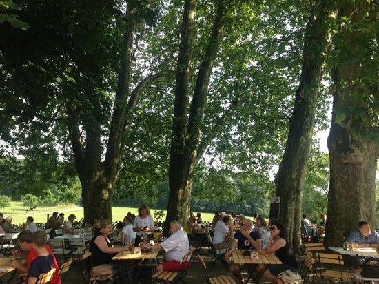 Bierhelderhof: Biergarten-Atmosphäre unter großen, alten Bäumen