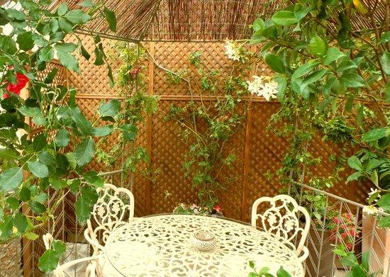 Tortillas picture of jardin secreto salvador bachiller for Jardin secreto