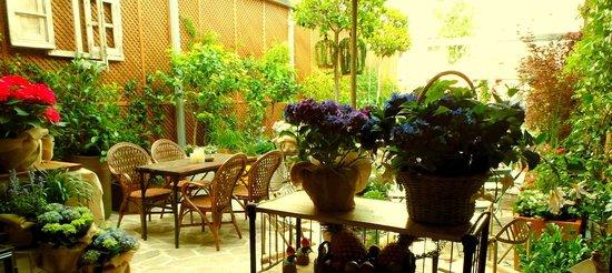 Restaurante jard n secreto salvador bachiller en madrid for El jardin secreto salvador bachiller