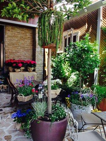 Tacitas de t picture of jardin secreto salvador for Jardin secreto