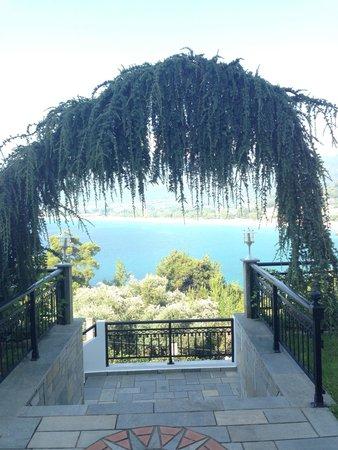 Island View Villa: The entrance
