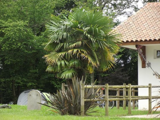 Camping Eskualduna : jardin payasger