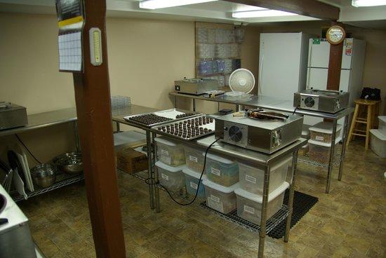 "Monica's Chocolates: In the ""chocolate kitchen"""