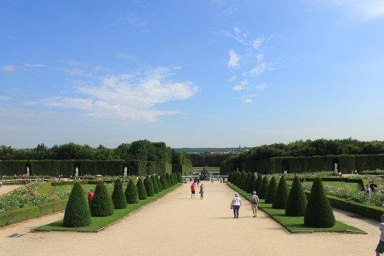 Château de Versailles : One of the gardens