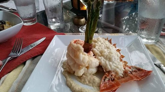 Next Course: Lobster with lobster risotto