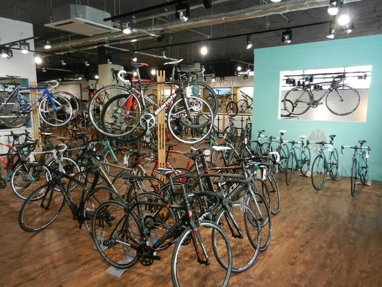 The Triathlon Shop (Bristol) - 2019 All You Need to Know