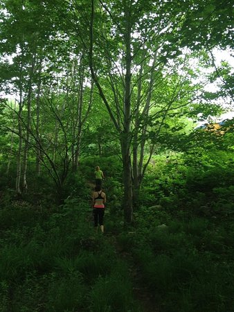 Cabot Shores Wilderness Resort and Retreat: Over the Orchard and Through the Forest to the Washroom We Go