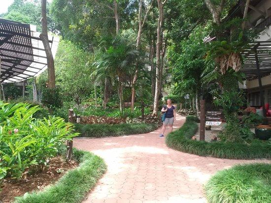 Pakasai Resort: השביל המוליך מהחדר לכיוון המסעדה