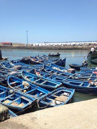 Dar Maya : port d essaouira