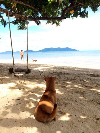 Klong Kloi Cottage: Chill out on the beach