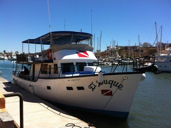 El Duque Liveaboard and Boat Charter - Day Tours