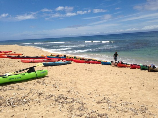 Kayak Kaua'i: Lunch break after 12miles