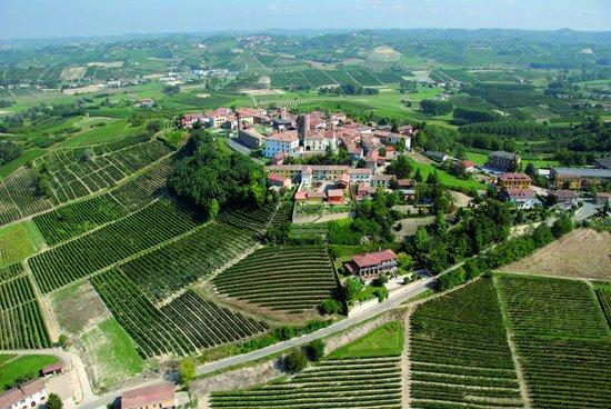 Cascina La Ghersa -Azienda Agricola Vitivinicola