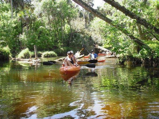 Florida central, FL: Turkey Creek