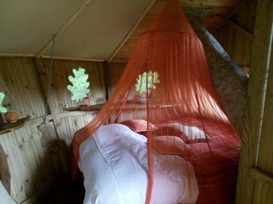 """Les Cabanes du Bois Landry : l'intérieur de la cabane """"Oiseaux)"""