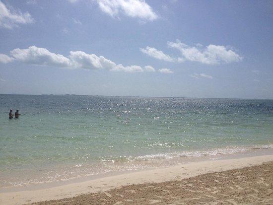 Beloved Playa Mujeres : Morning on the beach
