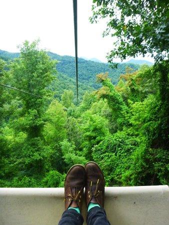 Navitat Canopy Adventures - Asheville Zipline: Beginning of zipline