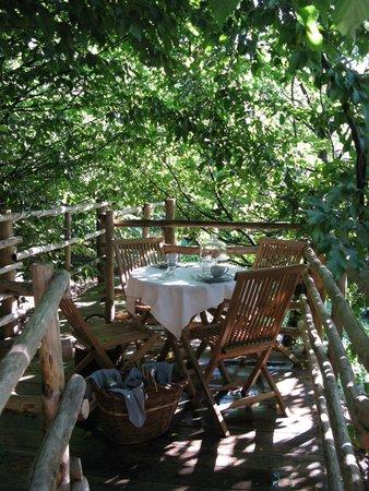Sentiero nel bosco foto di bed and breakfast il giardino - Il giardino dei semplici manta ...