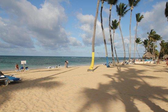 Sirenis Punta Cana Resort Casino & Aquagames : Beach