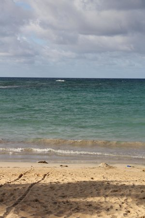 Sirenis Punta Cana Resort Casino & Aquagames: Sea