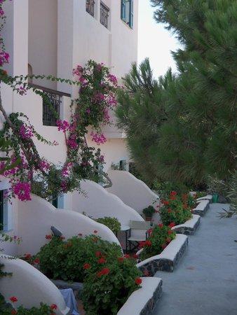 Costa Marina Villas: hotel